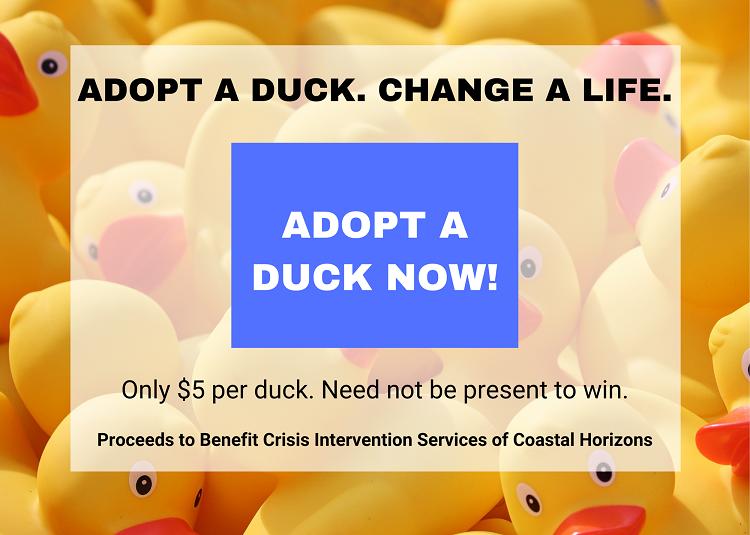 Adopt a Duck 750 px